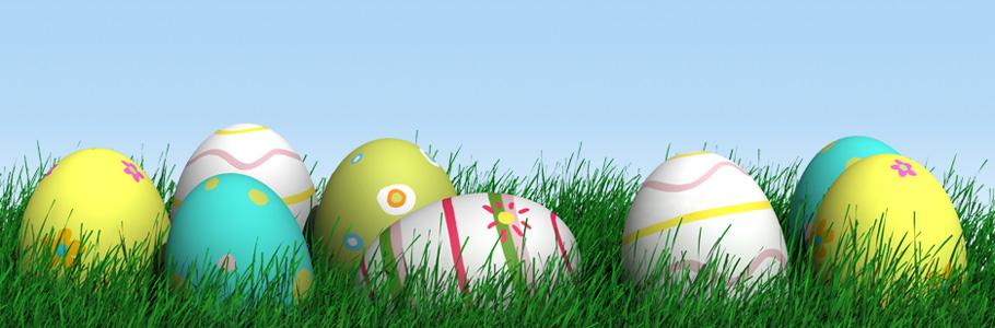 タマゴ・ファームの卵
